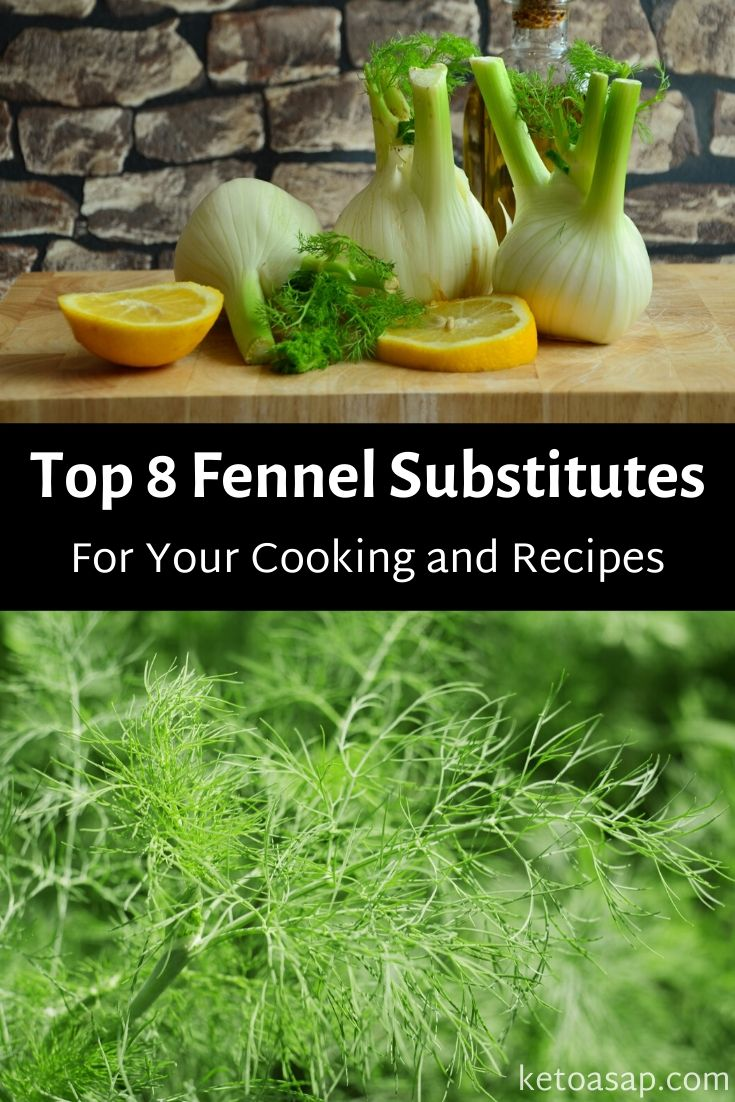 What Are The Best Alternatives to Fennel?